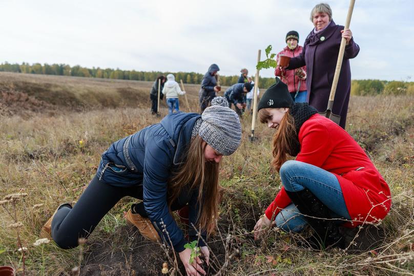 Участники акции наКуликовом поле высадят 4 тысячи двухлетних дубков