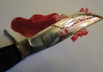 В подмосковной Электростали школьник, зарезавший охранника, хотел убить своих обидчиков